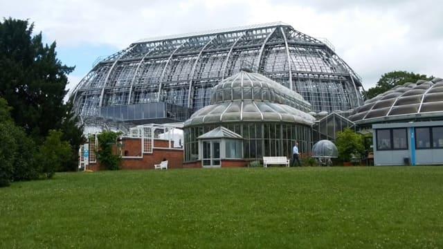cupula invernadero jardin botanico berlin