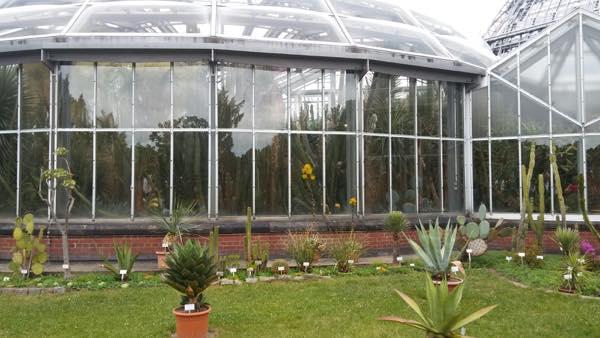 jardin botanico berlin que hacer