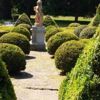jardin clasico para hotel