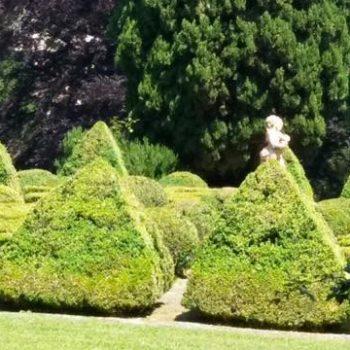jardin clasico presupuesto