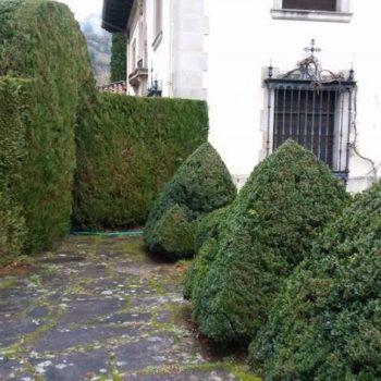 jardin estilo versalles