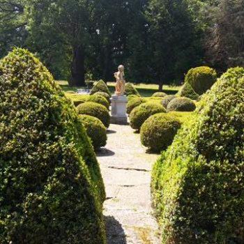 jardin minimalista diseño