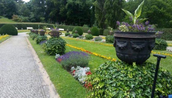 visita al jardin botanico de berlin