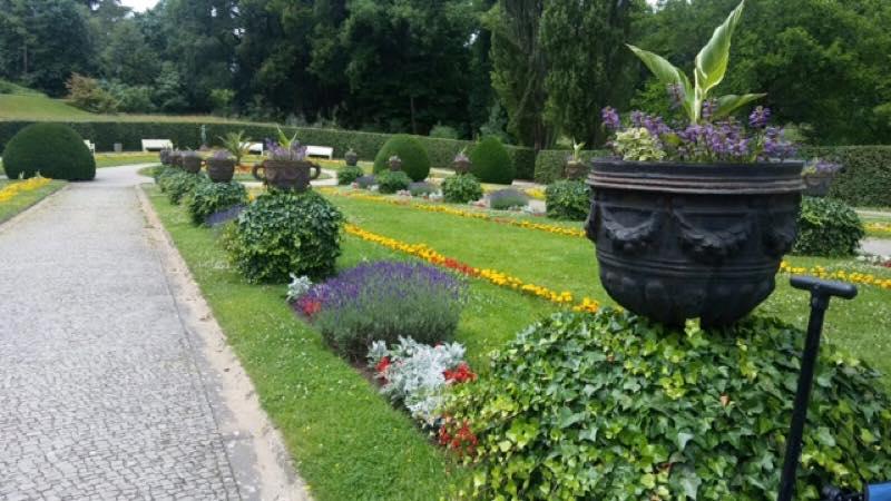 Mi visita al jard n bot nico de berl n jardineria loiu for Estudiar jardineria