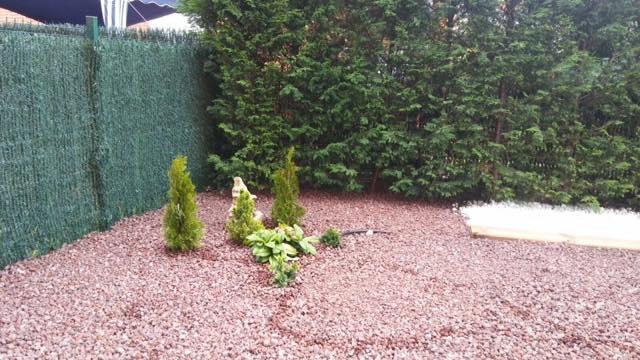 diseño jardin estilo minimalista