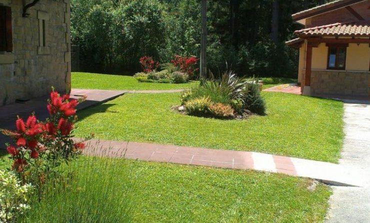 centro de jardieria ornamental