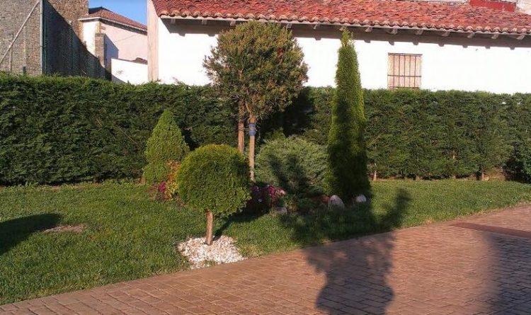 empresa de jardineria en vizcaya