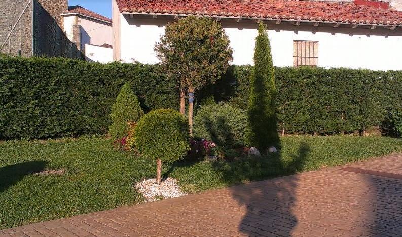 Dise o de jard n en gamiz fika bizkaia jardineria loiu for Empresas de jardineria