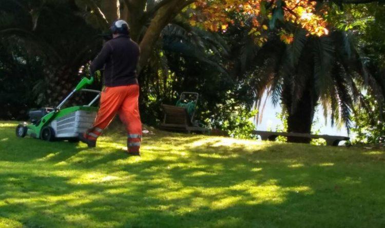 limpieza jardines en bizkaia