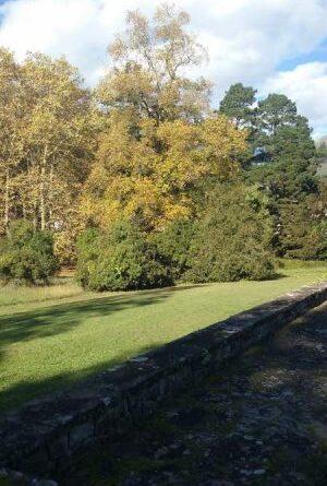 mantenimiento de jardin vizcaya