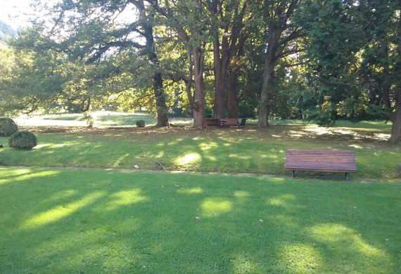 mantenimiento de jardines Palacio Sodupe