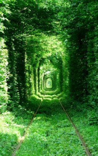 tunel del amor en ucraina