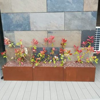 jardinero bizkaia terrazas