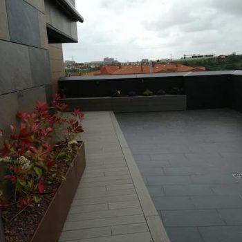 plantacion terrazas bizkaia