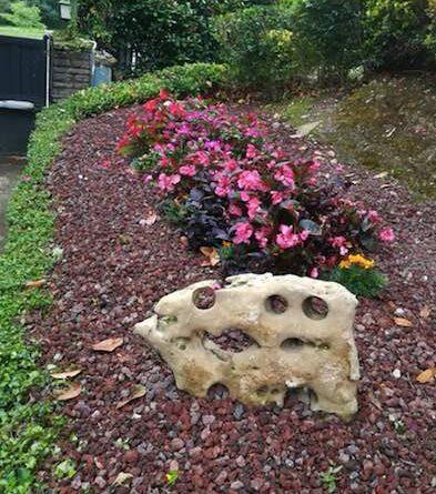jardineria en mungia