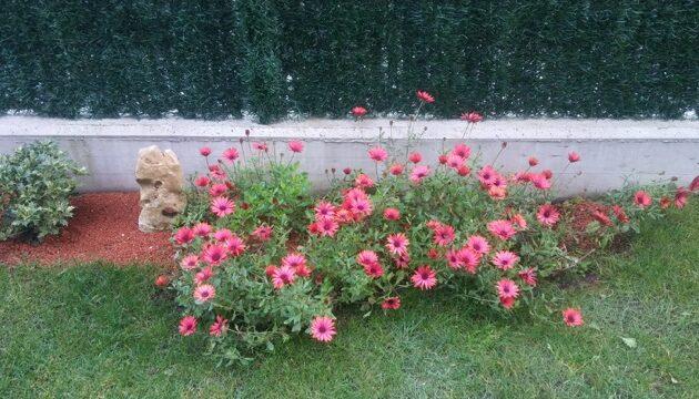ajardinamiento de jardin en loiu