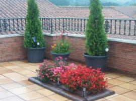 jardineria en bizkaia decoracion de terrazas