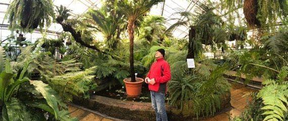El Jardín Botánico de Potsdam, en Alemania