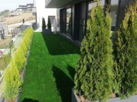 decoracion terraza coniferas solepana
