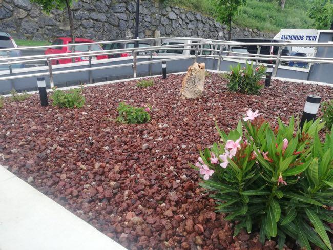 ajardinamiento con lava volcanica y especies florales