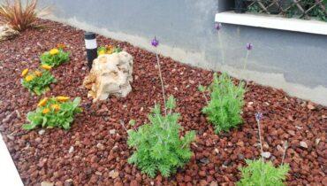 ajardinamiento plantas admiten salinidad-jardineria loiu