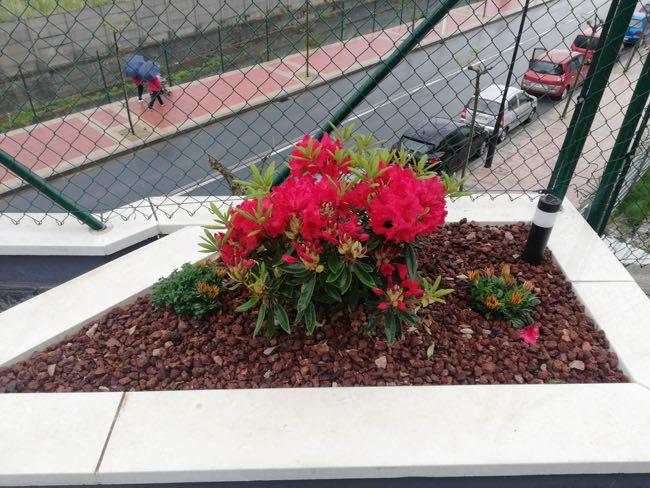 jardineria loiu trabajos Santurtzi