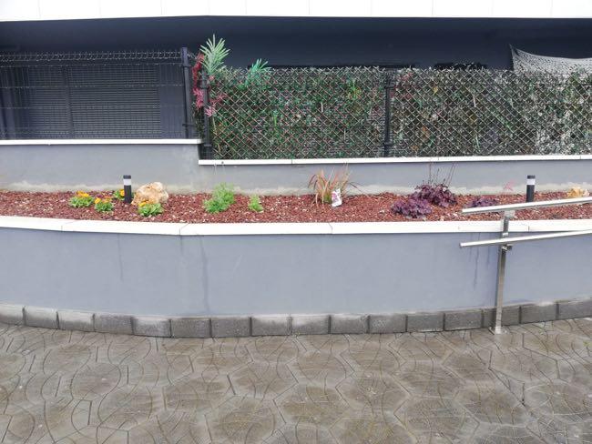 plantas que admiten salinidad para jardines