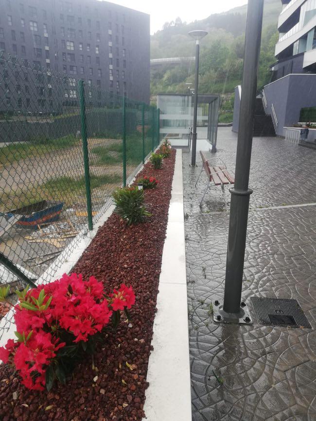 trabajo de jardineria en Santurtzi en vizkaia