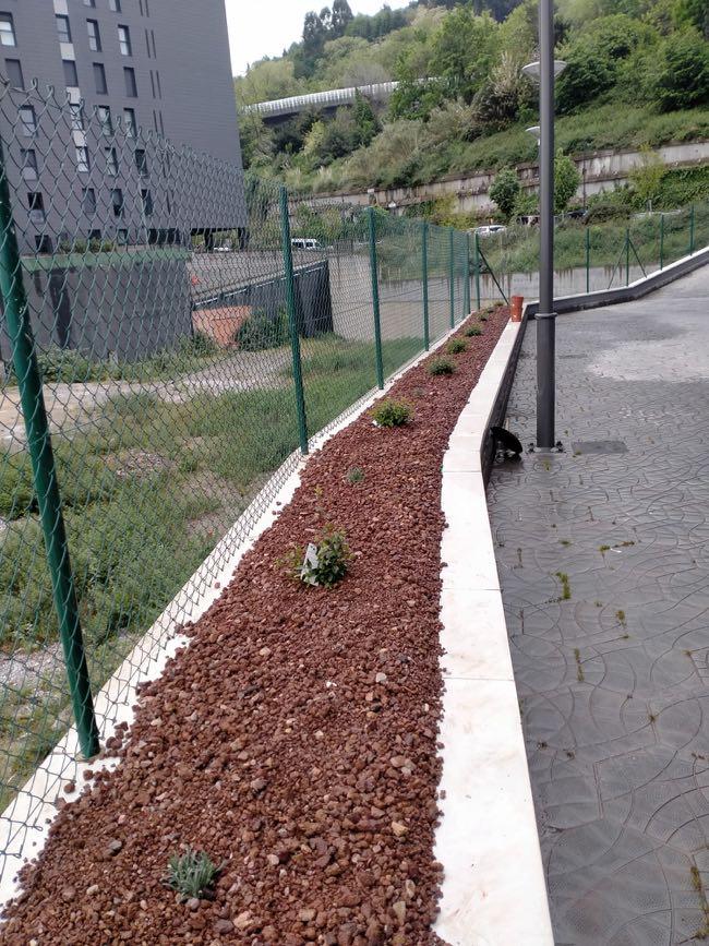 trabajos de jardineria empresa Santurtzi