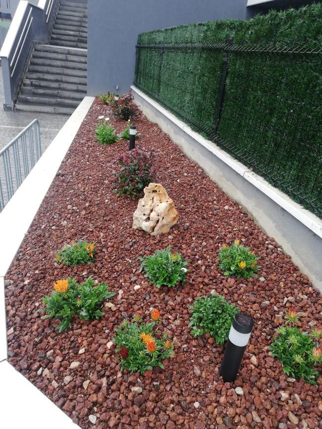trabajos de jardineria loiu