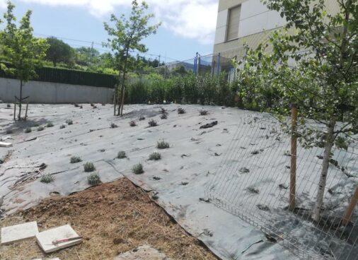 trabajo de jardineria en Algorta